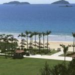 Beach & Garden