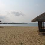 beach with pearce